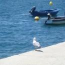 komarna_croatia_3_189